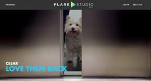 flare-studio-cesar-cropped